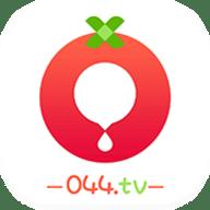 番茄社区app最新官网